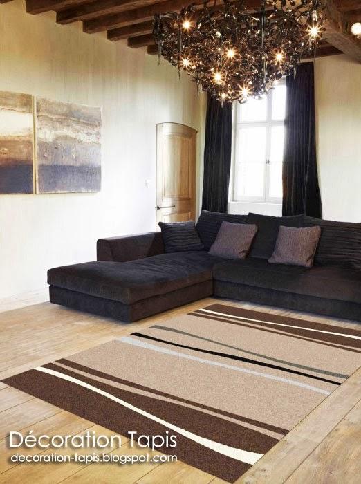 tapis salon gris. Black Bedroom Furniture Sets. Home Design Ideas