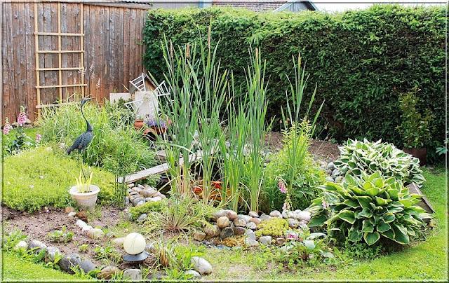 Aux jardins d 39 am lie le bassin aux poissons l 39 endroit zen du jardin - Bassin naturel sans bache bordeaux ...