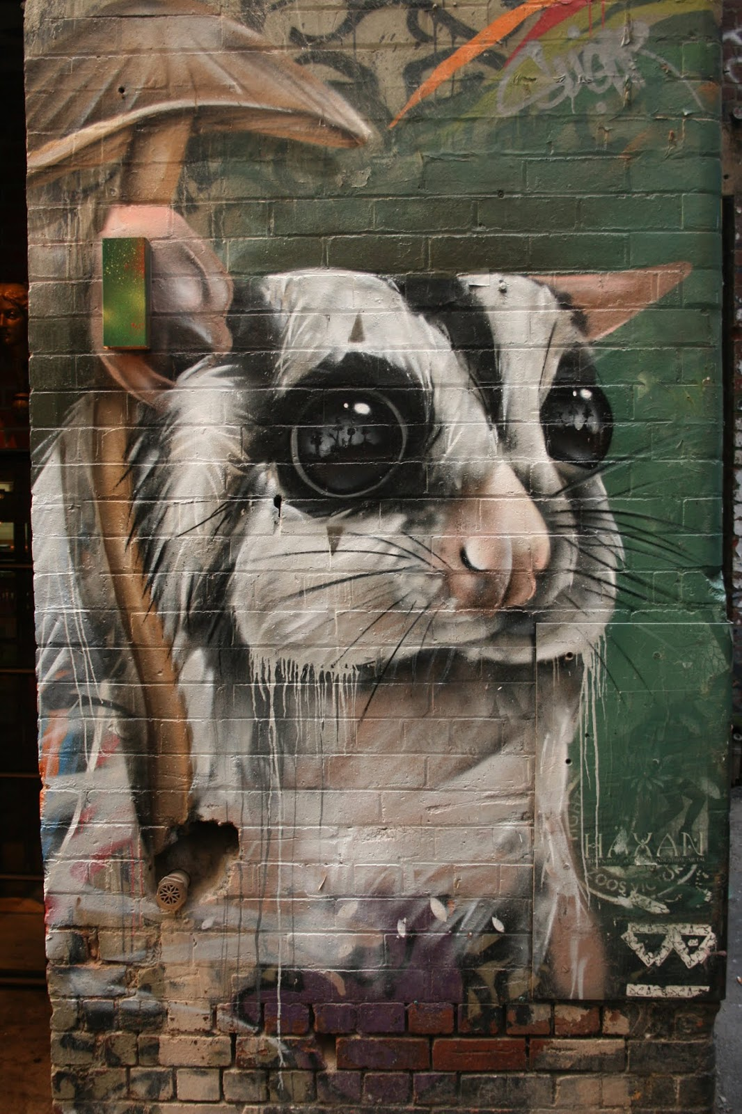 Street Art Melbourne 4 2018 Lushsux N2o Kambeeno Fintan Magee Sugar Phoenix Barek Ntb Drasko Graffitis Du Monde Street Art