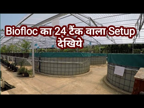 FISH FARMING WITH BIOFLOC TECHNOLOGY (BFT)