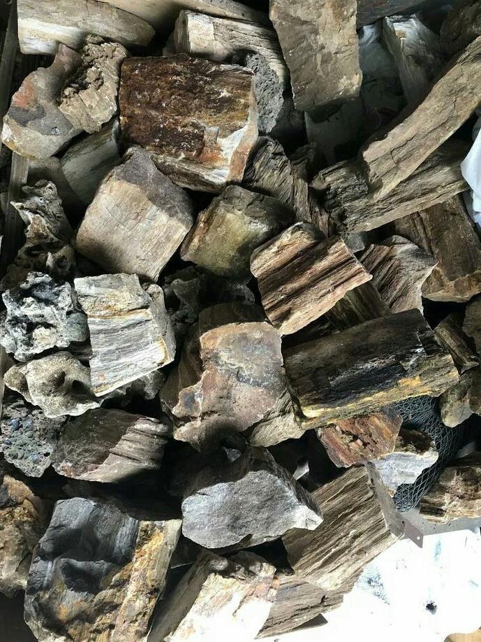 Gambar Aksesoris Aquarium Batu Hias Murah-Batu fosil