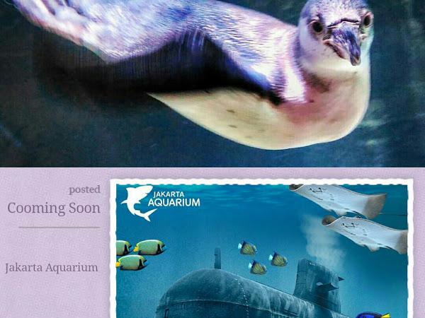 Yuk Telusuri Keindahan Alam Indonesia di Jakarta Aquarium