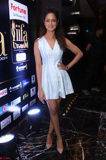 Shanvi Looks super cute in Small Mini Dress at IIFA Utsavam Awards press meet 27th March 2017 117.JPG