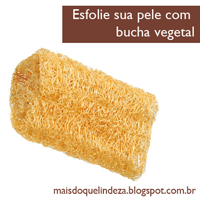 http://maisdoquelindeza.blogspot.com.br/2013/04/voce-esfolia-sua-pele-bucha-vegetal-e.html