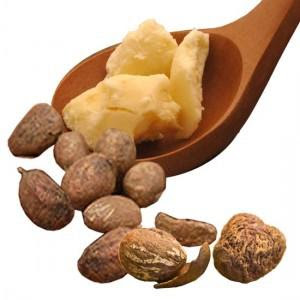 Manteca de karité y frutos shea butter