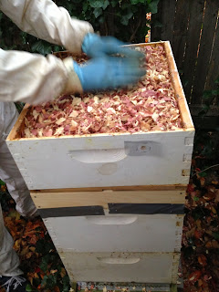 Gardening In The Boroughs Of Nyc Winterizing The Hive
