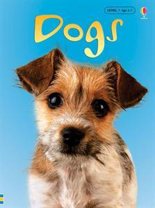 https://g4796.myubam.com/p/388/dogs-ir