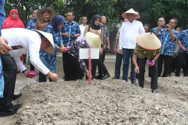 Gubsu Edy Rahmayadi saat menanam bibit kedelai dan ketapang di Asahan.
