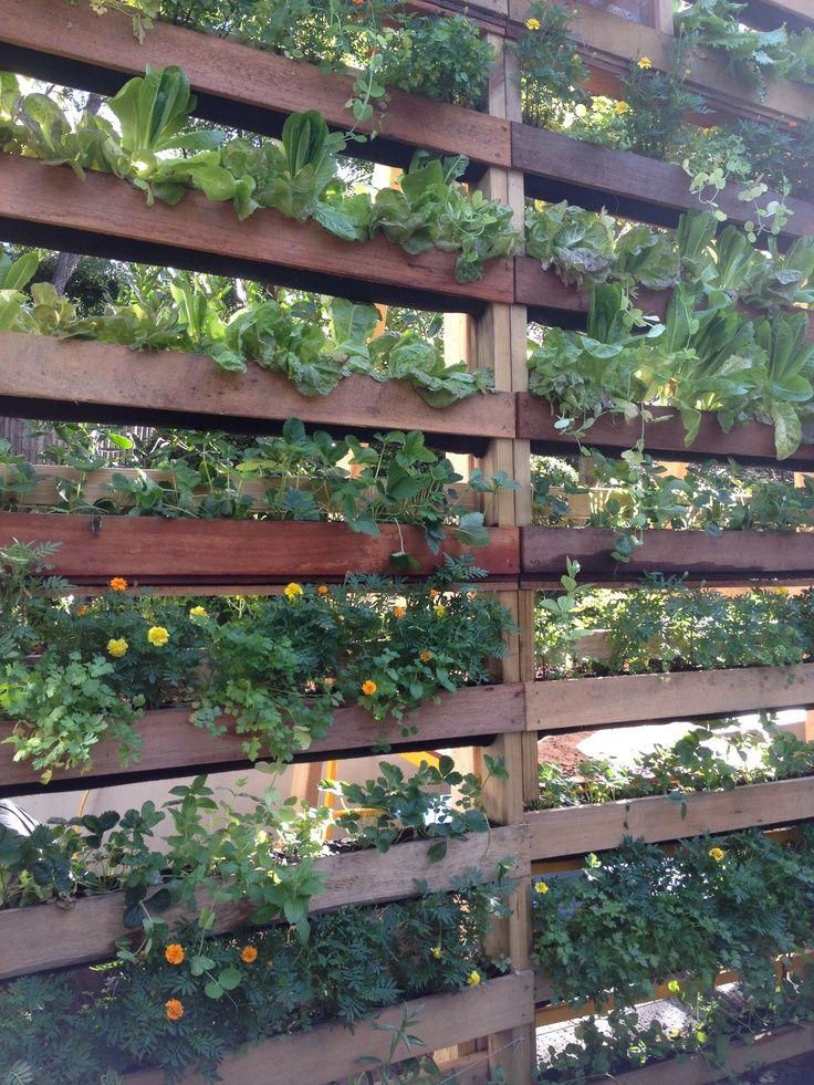 Flowers Gardens: DIY Patio Privacy Screens