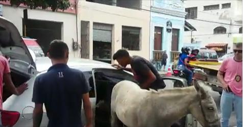 Em Fortaleza/CE, homens são detidos transportando burro dentro de carro de passeio