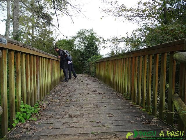 Puente sobre el Río Nueva, Llanes
