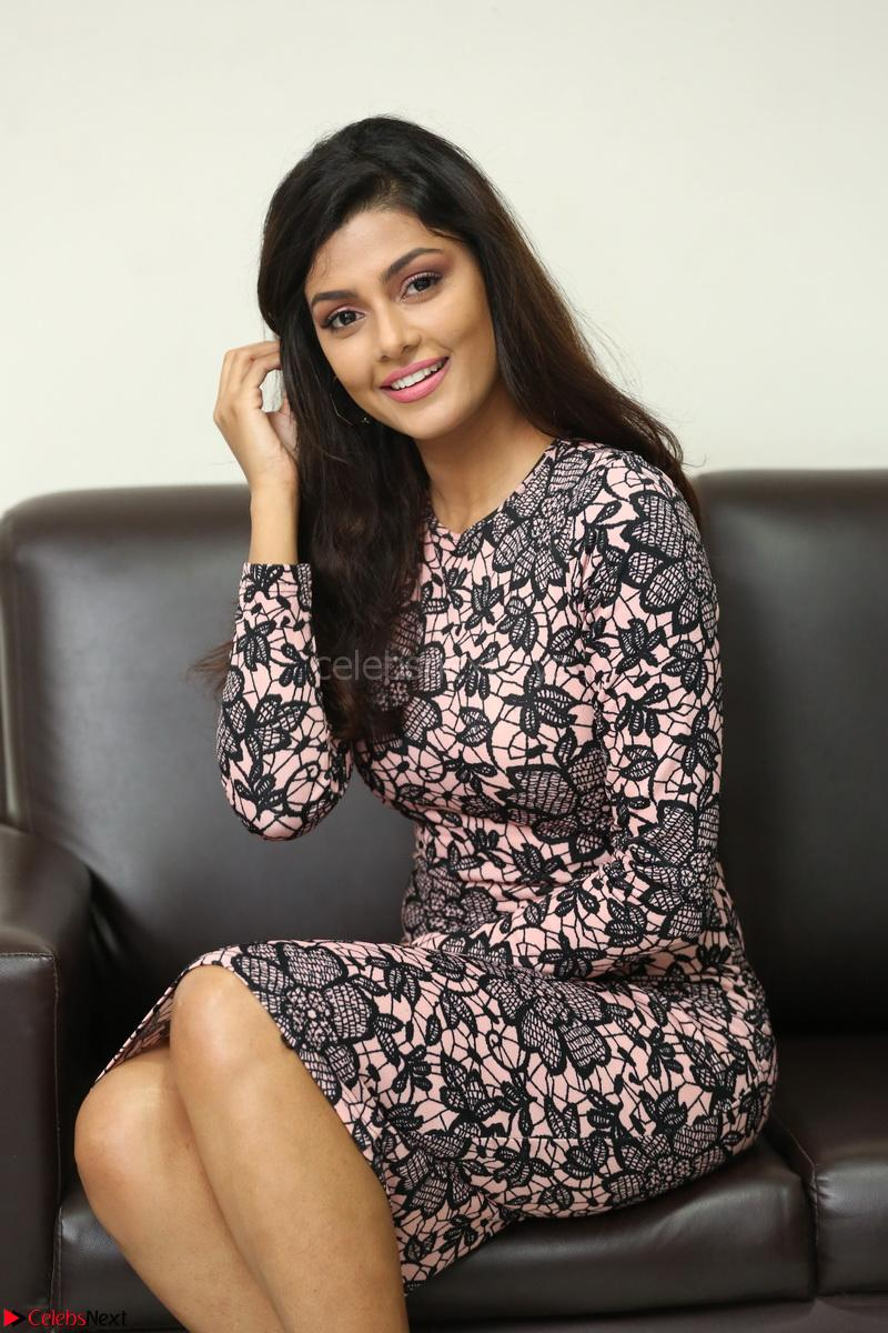 Anisha Ambrose Tight Short Dress 015 Anisha Ambrose In Tight Short Dress At Fashion Designer Son Of Ladies Tailor Press Meet