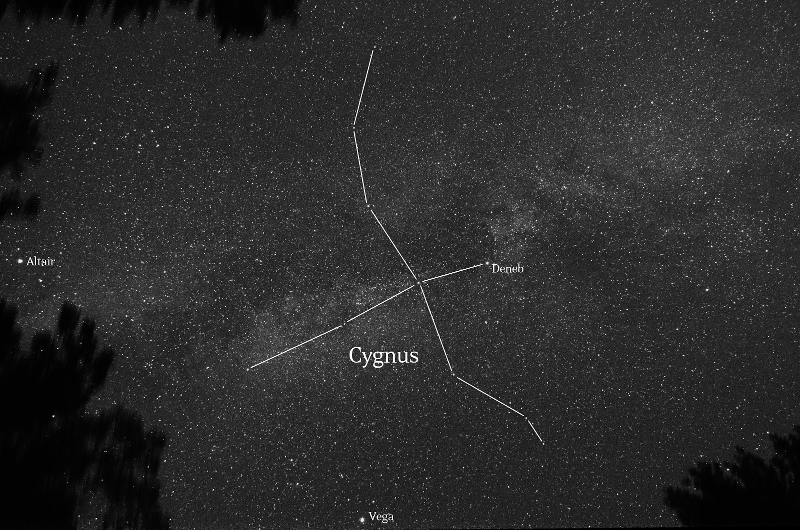 cygnus milky way label