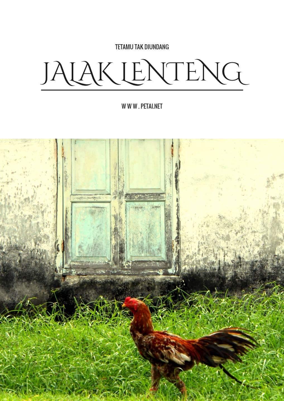 Ayam Jantan Jalak Lenteng