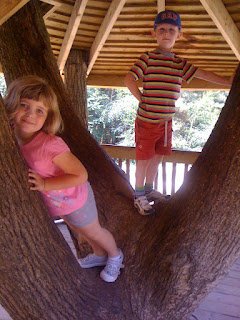 treehouse in forest of bere adventure playground