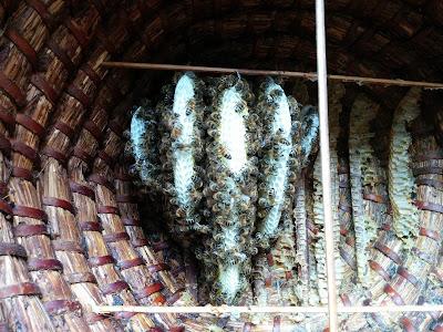 natuurzuivere bijenwas