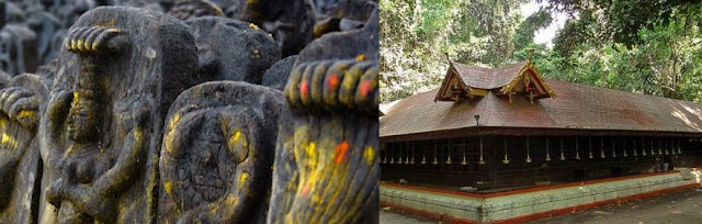Here we try to list out Famous Snake Temples in Kerala,snake temple in kerala,largest snake temple in kerala,mannarasala snake temple,snake worship in kerala