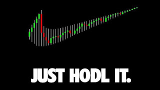 just hodl it bitcooin