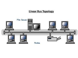 Topologi Linier (Bus Tingkat Beruntut)