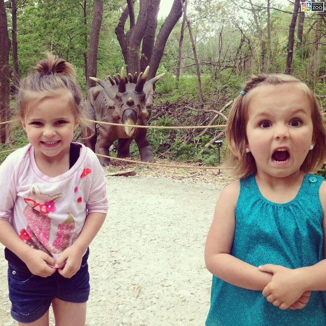22 Photos That Utterly Capture Powerful Feelings - These are two possible reactions to seeing a dinosaur.
