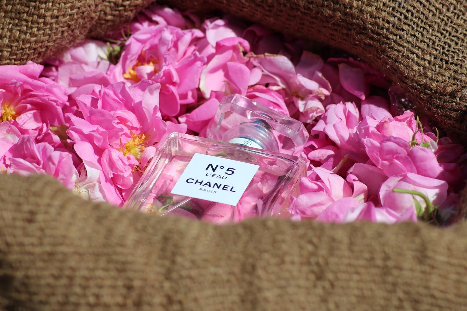 Dans Les Champs De Chanel Le Blog De Laurie