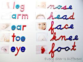 Spelling body parts