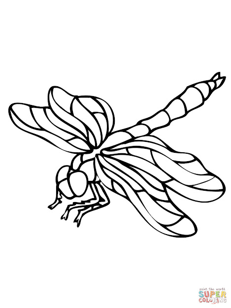 Download Coloring Pages Dragonfly Coloring Page Dragonfly Coloring Page  Free Printable Coloring Pages Sheets