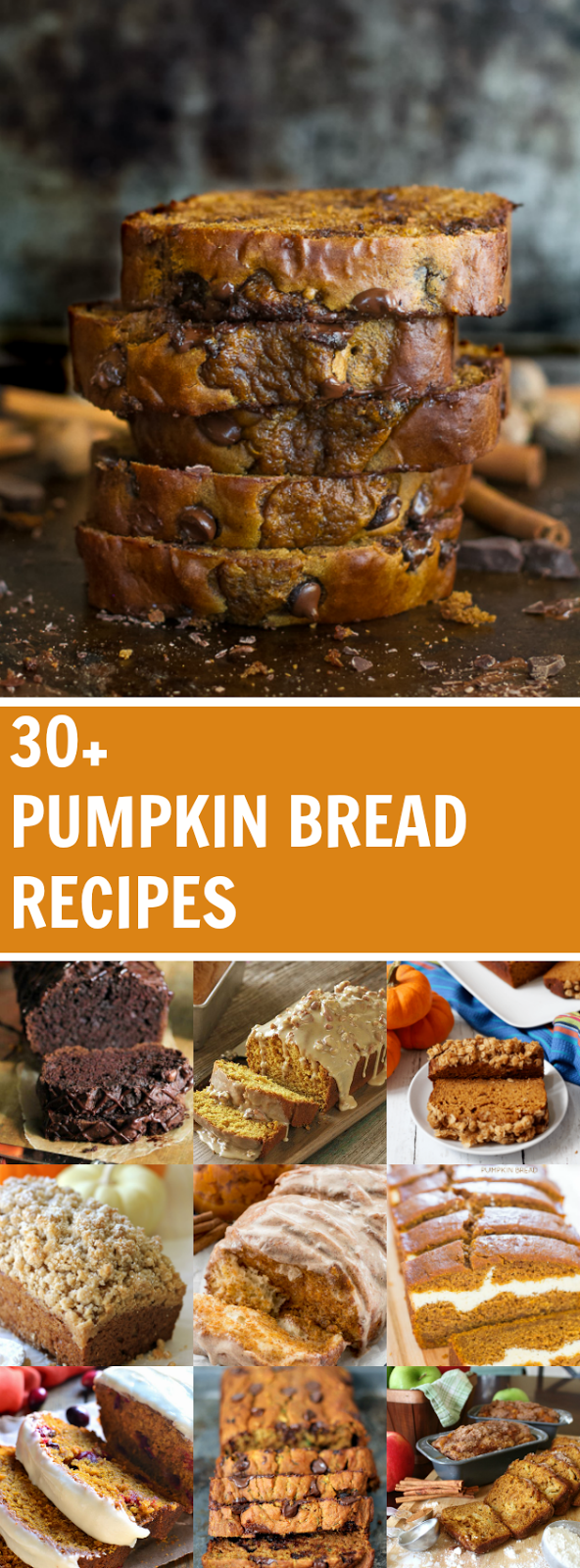 More than 30 delicious recipes for pumpkin bread including Pumpkin Cranberry Bread, Triple Chocolate Pumpkin Bread, and Cream Cheese Filled Pumpkin Bread!