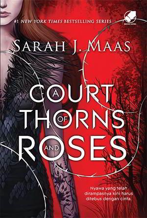 A Court Of Thorns And Roses PDF Karya Sarah J. Maas