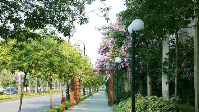 Không gian xanh tại Ciputra