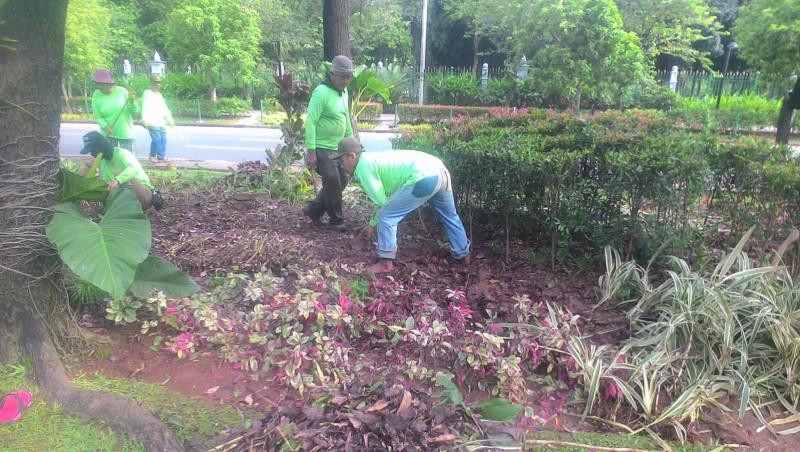 Perbaikan taman di depan Balai Kota
