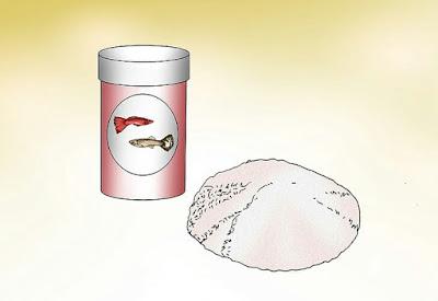 Gambar makanan ikan