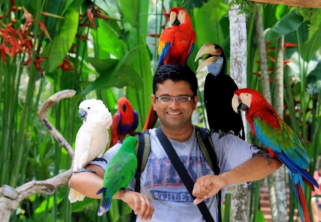 gambar wisata edukasi bali bird park