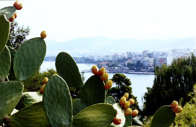 Czy warto jechać na Eubeę (Evię) w Grecji?/Is it worth to visit Eubea (Evia) in Greece?
