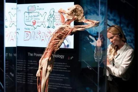 interactive exhibition at Body Worlds London