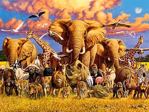 Στοιχεία σοκ για κλιματική αλλαγή και απειλούμενα είδη