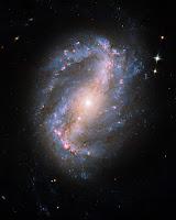 Spiral Galaxy NGC 6217