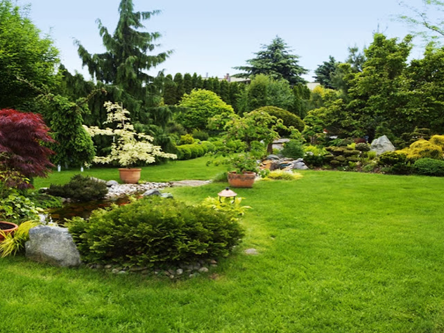 gambar Cara mudah menambah nilai jual taman hias rumah kita