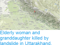 http://sciencythoughts.blogspot.co.uk/2013/08/elderly-woman-and-granddaughter-killed.html