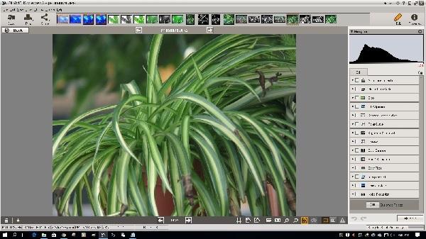 OV3 Image Edit Window
