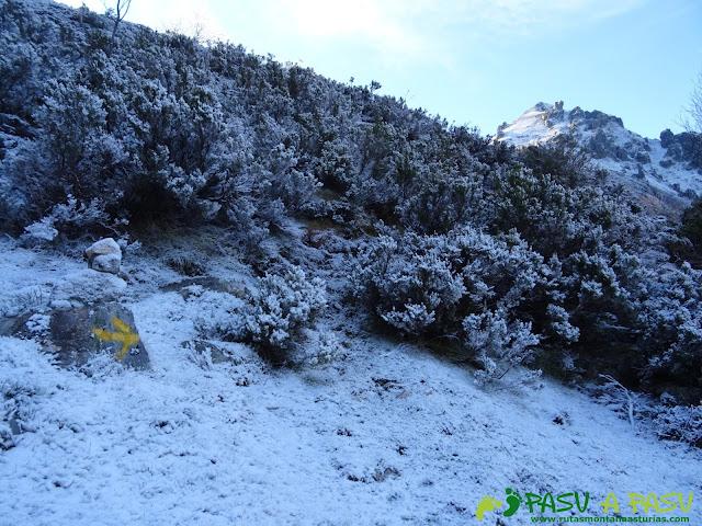 Ruta Gumial: sendero entre nieve