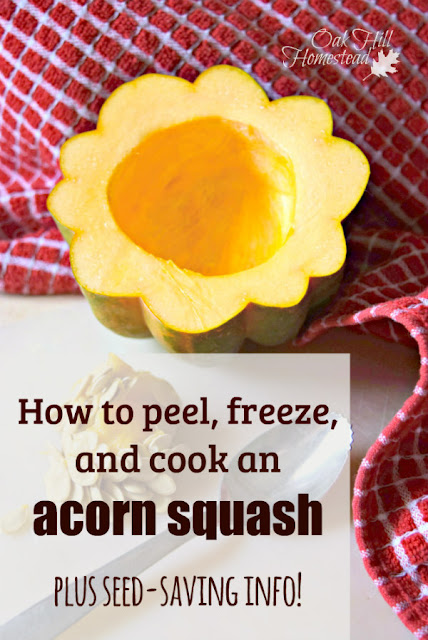 How to freeze and cook an acorn squash, and how to save its seeds to plant in next year's garden.