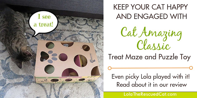 Cat Amazing|puzzle feeders