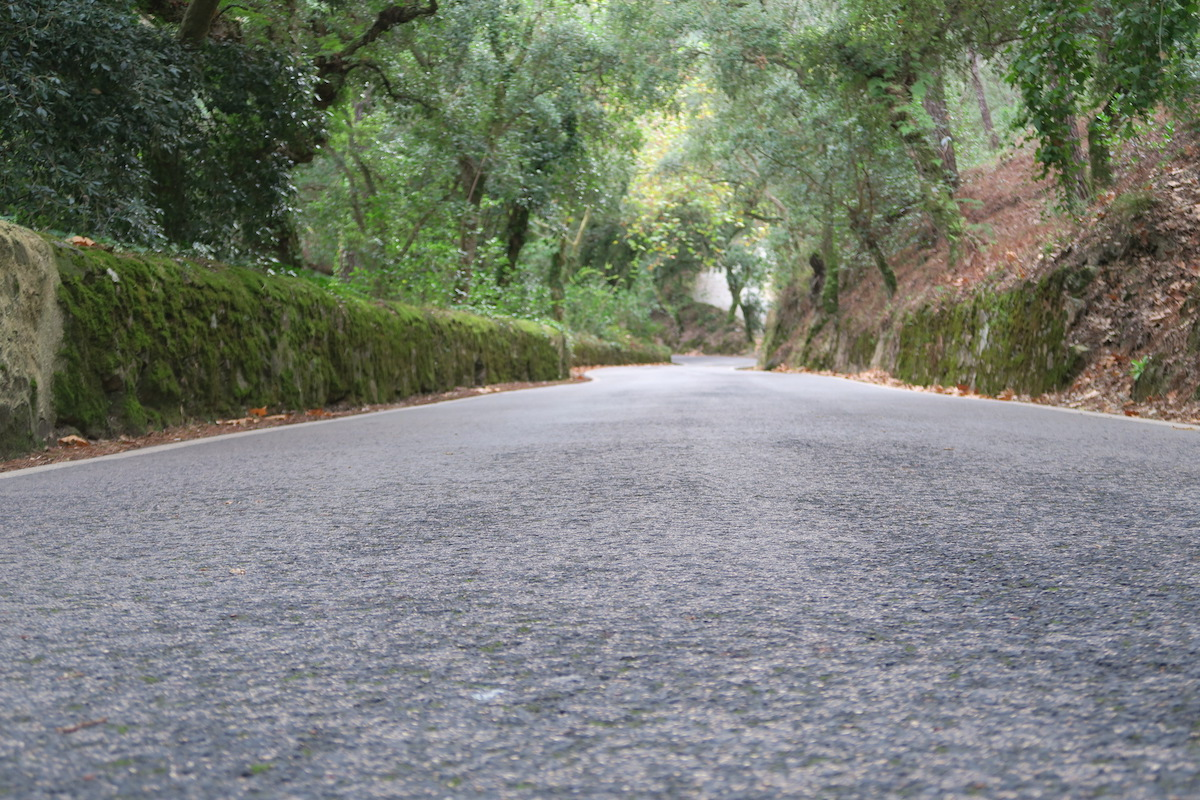 This is a photo of the road to Quinta da Regaleira.