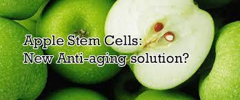 Betul_Ke_Produk _APPLE _STEM _CELL _Bagus _Untuk _Kesihatan _Dan _Kulit?
