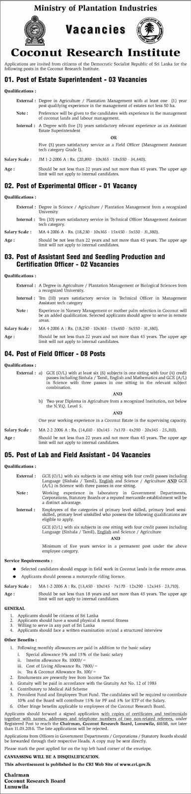 Vacancies - Estate Superintendent, Experimental Officer, Assistant Seed and Seedling Production and Certification officer, Field Officer, Lab & Field Assistant – Lab and Field Assistant -Coconut Research Institute - Ministry of Plantation Industries