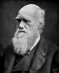 Charles Darwin - Las cartas del Beagle