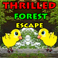 YalGames Thrilled Forest …