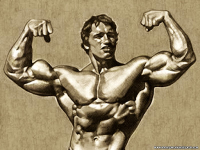 Art Of Body building