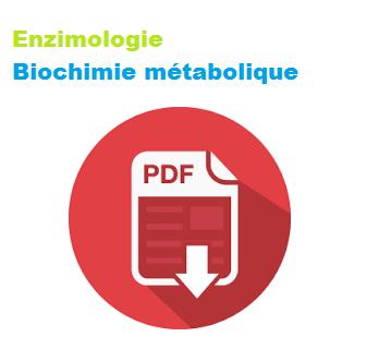 Cours Enzymologie Biochimie Pdf
